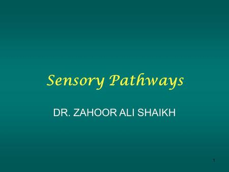 1 Sensory Pathways DR. ZAHOOR ALI SHAIKH. Before we talk about sensory pathways we will trace the course of sensory impulse from receptors to the spinal.