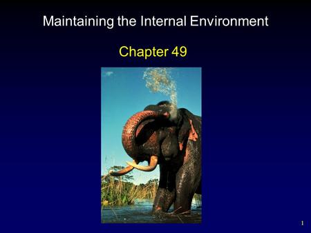 1 Maintaining the Internal Environment Chapter 49.