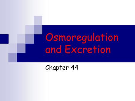 Osmoregulation and Excretion Chapter 44. Osmoregulation A balancing act The physiological systems of animals  Operate in a fluid environment The relative.