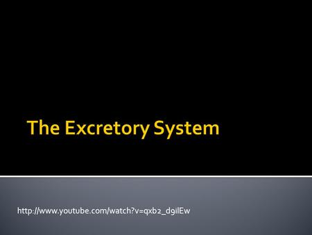 The Excretory System http://www.youtube.com/watch?v=qxb2_d9ilEw.