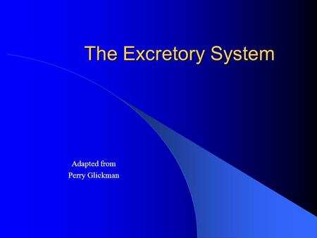 The Excretory System Adapted from Perry Glickman.