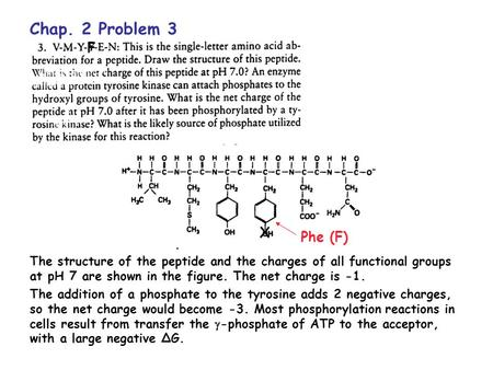 Chap. 2 Problem 3 F X Phe (F) The structure of the peptide and the charges of all functional groups at pH 7 are shown in the figure. The net charge is.