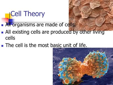 Cell Theory All organisms are made of cells. All existing cells are produced by other living cells The cell is the most basic unit of life.