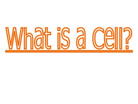 What is a Cell?.