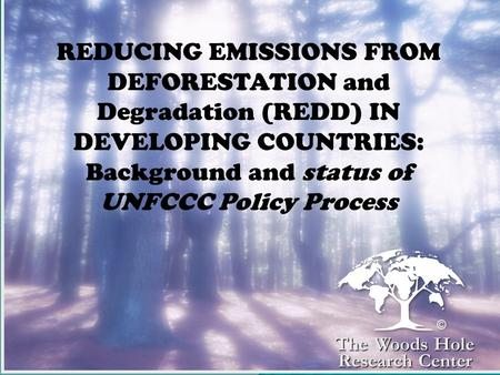 REDUCING EMISSIONS FROM DEFORESTATION and Degradation (REDD) IN DEVELOPING COUNTRIES: Background and status of UNFCCC Policy Process The Woods Hole Research.