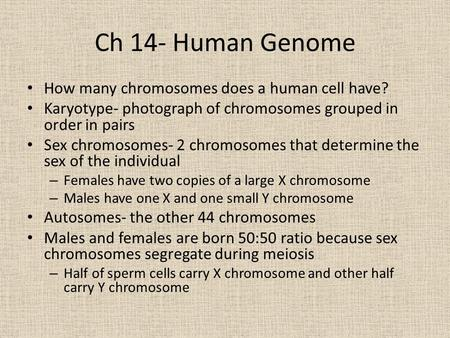 Ch 14- Human Genome How many <strong>chromosomes</strong> does a human cell have?