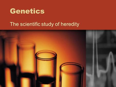 Genetics The scientific study of heredity Gregor Mendel is considered to be the father of genetics due to his work with in the 1800's. Pea Plants.
