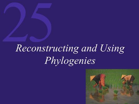 Reconstructing and Using Phylogenies