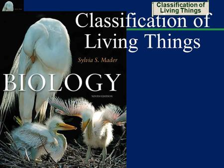 Classification of Living Things. 2 Taxonomy: Distinguishing Species Distinguishing species on the basis of structure can be difficult  Members of the.