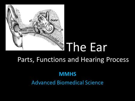 The Ear Parts, Functions and Hearing Process