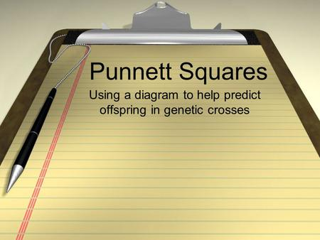 Punnett Squares Using a diagram to help predict offspring in genetic crosses.