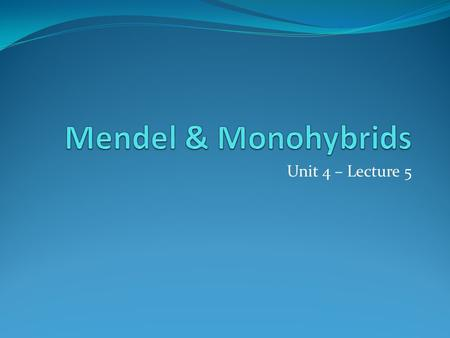 Unit 4 – Lecture 5. Mendel Gregor Mendel – father of genetics / hereditary sci genetics – branch of biology which studies heredity heredity – passing.