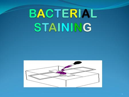 BACTERIAL STAINING.