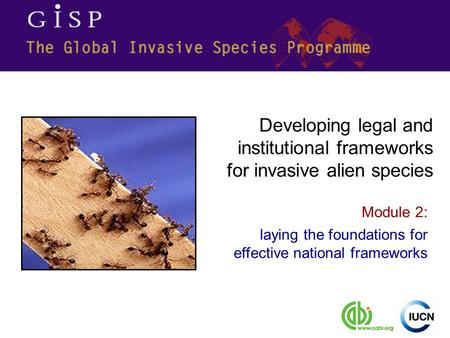 Module 2: laying the foundations for effective national frameworks Developing legal and institutional frameworks for invasive alien species.