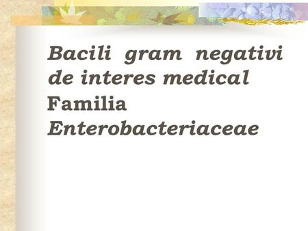 Bacili gram negativi  de interes medical