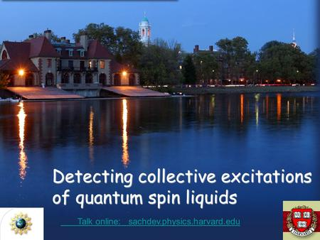 Detecting collective excitations of quantum spin liquids Talk online: sachdev.physics.harvard.edu Talk online: sachdev.physics.harvard.edu.