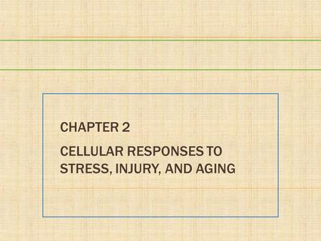 Chapter 2 Cellular Responses to Stress, Injury, and Aging