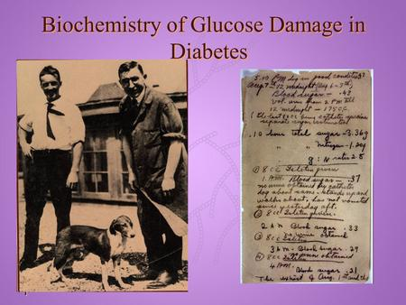 Text 1 Biochemistry of Glucose Damage in Diabetes.