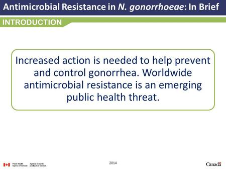 Antimicrobial Resistance in N. gonorrhoeae: In Brief 2014 INTRODUCTION Increased action is needed to help prevent and control gonorrhea. Worldwide antimicrobial.