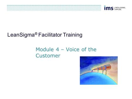 LeanSigma ® Facilitator Training Module 4 – Voice of the Customer.