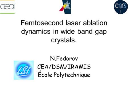 Femtosecond laser ablation dynamics in wide band gap crystals. N.Fedorov CEA/DSM/IRAMIS École Polytechnique.