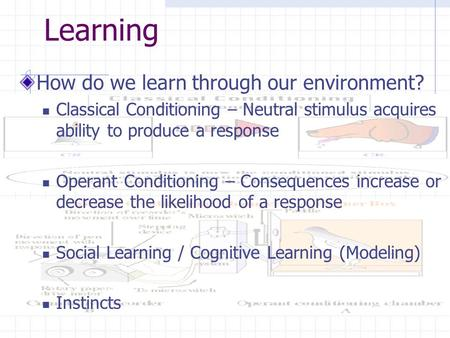 Learning How do we learn through our environment? Classical Conditioning – Neutral stimulus acquires ability to produce a response Operant Conditioning.