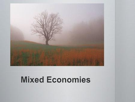Mixed Economies.
