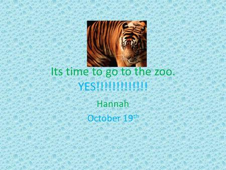 Its time to go to the zoo. YES!!!!!!!!!!!!! Hannah October 19 th.