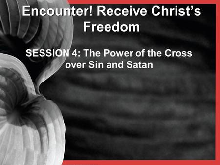 Encounter! Receive Christ's Freedom SESSION 4: The Power of the Cross over Sin and Satan.