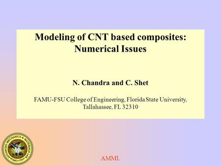 Modeling of CNT based composites: Numerical Issues