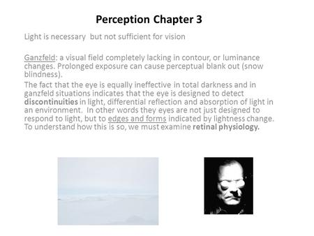 Perception Chapter 3 Light is necessary but not sufficient for vision Ganzfeld: a visual field completely lacking in contour, or luminance changes. Prolonged.