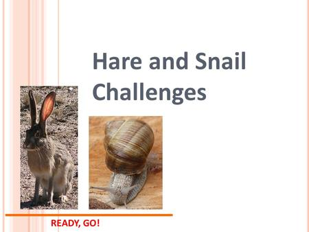 READY, GO! Hare and Snail Challenges. 1. What are some design considerations to make a fast robot? 2. What are some design considerations to make a slow.