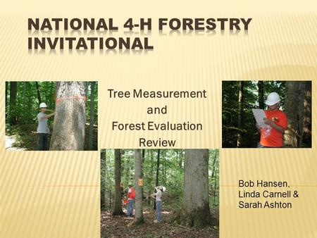 Tree Measurement and Forest Evaluation Review Bob Hansen, Linda Carnell & Sarah Ashton.