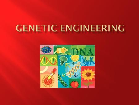 At the end of this lesson you should be able to 1. Define Genetic Engineering 2. Outline the process of genetic engineering involving some or all of the.