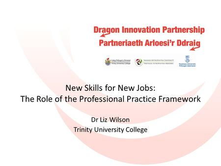 New Skills for New Jobs: The Role of the Professional Practice Framework Dr Liz Wilson Trinity University College.