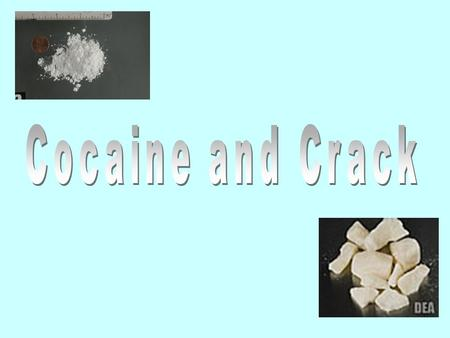 What is Cocaine? Cocaine is a strong, highly addictive Central Nervous System stimulant that interferes with the absorption of dopamine, the brain chemical.