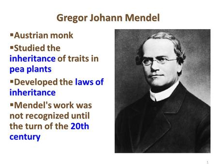 1 Gregor Johann Mendel  Austrian monk  Studied the inheritance of traits in pea plants  Developed the laws of inheritance  Mendel's work was not recognized.