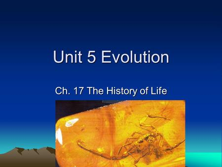 Unit 5 Evolution Ch. 17 The History of Life.