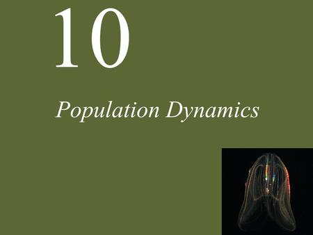 10 Population Dynamics. 10 Population Dynamics Case Study: A Sea in Trouble Patterns of Population Growth Delayed Density Dependence Population Extinction.