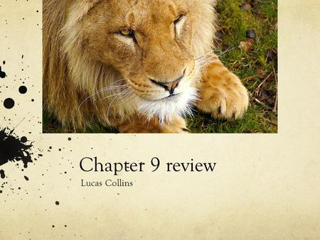 Chapter 9 review Lucas Collins. Section 1 Species are becoming extinct 1,000 times faster than when modern humans first arrived. But by the end of the.
