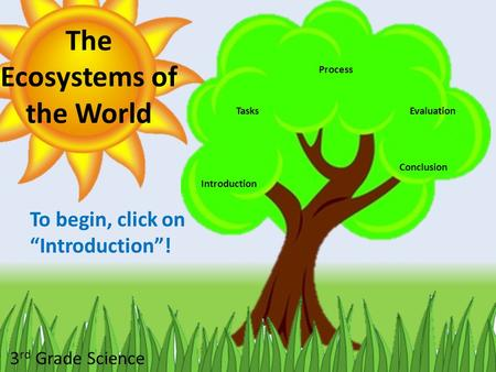 The Ecosystems of the World