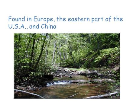 Temperate Deciduous Forest Found in Europe, the eastern part of the U.S.A., and China.