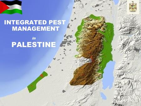 INTEGRATED PEST MANAGEMENT in PALESTINE. INTRODUCTION - Agriculture sector is considered one of the major productive sector in Palestine. - Scarcity of.