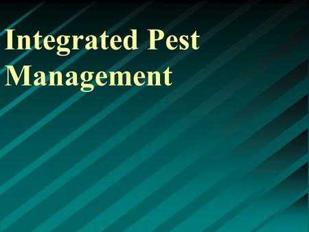 Integrated Pest Management. What pests are we talking about? ▸ Weeds ▸ Insects ▸ Disease ▸ Rodents ▸ Birds ▸ Many others.