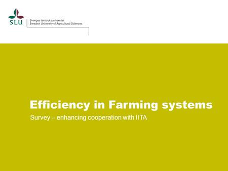 Efficiency in Farming systems Survey – enhancing cooperation with IITA.