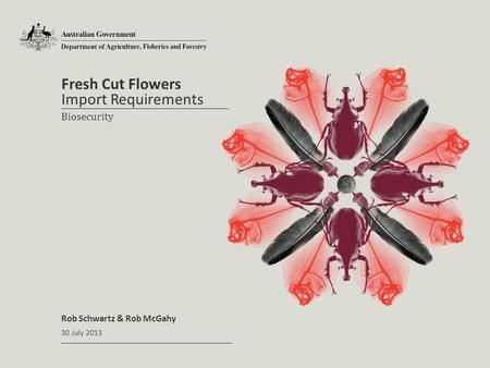 Fresh Cut Flowers Rob Schwartz & Rob McGahy Import Requirements 30 July 2013 Biosecurity.