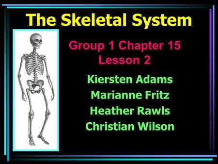 The Skeletal System Kiersten Adams Marianne Fritz Heather Rawls Christian Wilson Group 1 Chapter 15 Lesson 2.