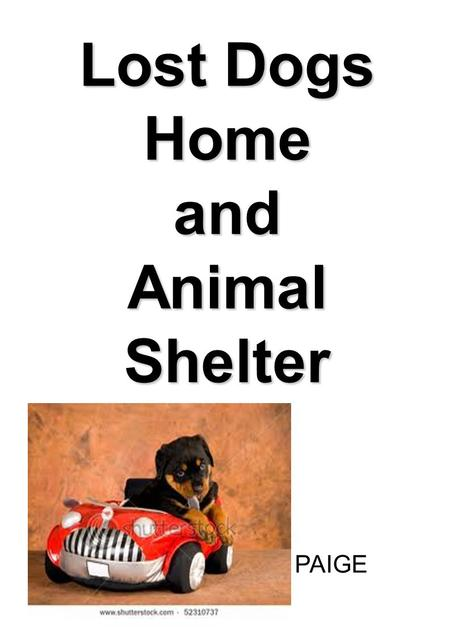 Lost Dogs <strong>Home</strong> <strong>and</strong> <strong>Animal</strong> Shelter PAIGE. I WONDER... What to do if you lose a pet? Where the pound is? Where the lost dogs <strong>home</strong> is? How I can help?