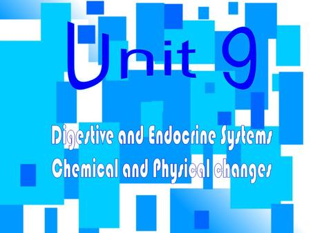 Digestive and Endocrine Systems Chemical and Physical changes
