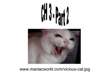 CH 3 - Part 2 www.maniacworld.com/vicious-cat.jpg.